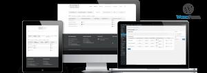 Custom WordPress Plugin For Financial Results