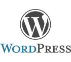 Wordpress CMS and Blog Logo