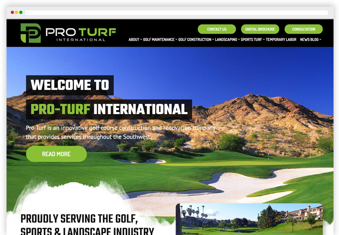 Pro Turf International Custom Wordpress Website webpage-view