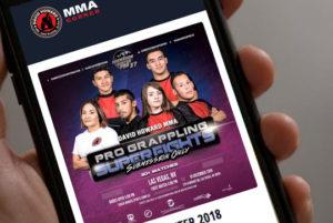 David Howard's MMA Corner WordPress Website