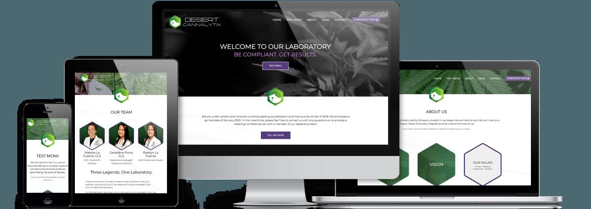 Desert Cannalytix website project responsive view